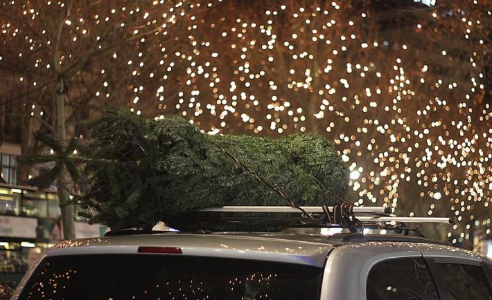 vánoční osvětlení na stromek
